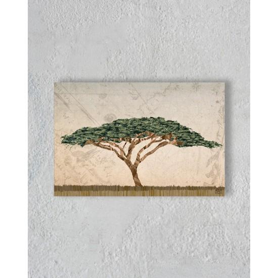 Toile d'un arbre dans la savane sans encadrement